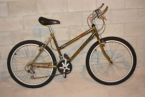 Mountain Bike - 21 Speed - REDUCED PRICE