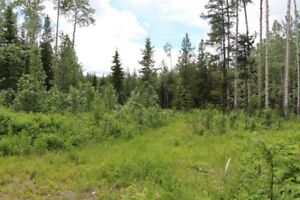 5 acre lot for sale in Topley BC