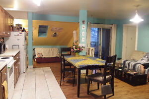 Sweet & Cozy 3 Bedroom North End Apartment