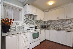 **Beautiful Fully Renovated House in Georgetown/Norval