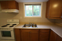 Renovated gorgeous 1 Bedroom Apt in Central Oshawa, 2 Parkings