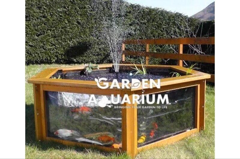 Lily Clear View Garden Aquarium Raised Fish Pond In