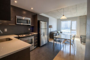 Modern 3 Bedrooms 1 Bath Fully Furnished - Griffintown