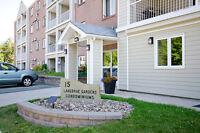 Beautiful 1 Bedroom + Den Condo in Clayton Park! Low Condo Fees!