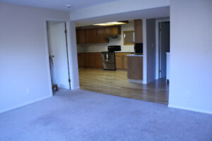 Newly renovated one Bedroom + Den own private fenced yard.