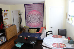 Furnished One Bedroom Apartment May - August Sublet