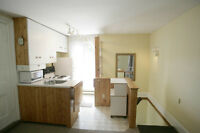 Bright 1 Bedroom apartment Downtown Brockville + outdoor space
