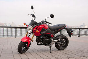 Want to buy - Honda GROM