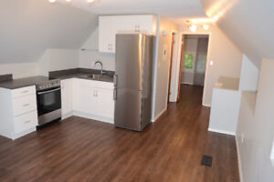 Cathedral one bedroom, complete new renovation, top floor, deck