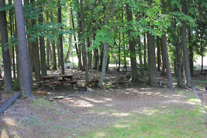 Campground for sale in the Kootenays Revelstoke British Columbia image 3