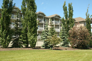 Spruce Grove 1 bed condo for rent or sale