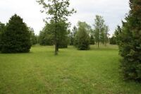 54.42 Acre Lot in Beckwith Township
