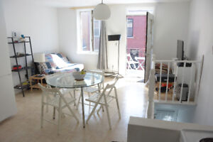 Cosy and luminous 3-bedroom appartment in Lower Plateau/McGill