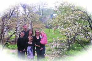 Special edited photos, special Mother's day  only 49 $ for 1hr Kitchener / Waterloo Kitchener Area image 8