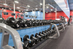 8 Month Personal Training Package at World Gym! Cambridge Kitchener Area image 2