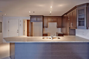 Brand new 2 bedrooms penthouse condo in the West Island.