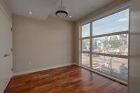 Gorgeous Brand New Infill - 2 Storey Suite in Capitol Hill