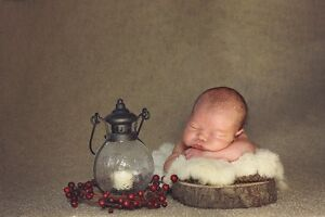 ~~ Beautiful IN HOME Newborn Photography ~~ London Ontario image 4