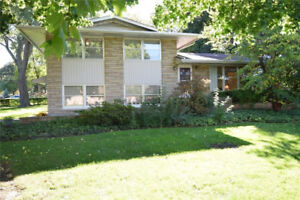 Beautiful Grimsby Home with Backyard Oasis! Must See!