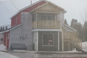 Building and land For Sale In Springdale, NL