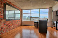 OLD MTL, stunning appartment, bright, applian, brick wall,gym