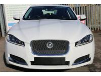 Jaguar XF 2.2TD ( s/s ) Auto 2013 Luxury 1 OWNER FULL JAGUAR SERVICE HISTORY