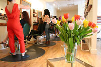 Opportunity for Licensed, Experienced Esthetician on Academy