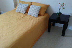 Clean and simple furnished ro.