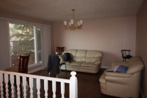 Beautiful Millwoods Home