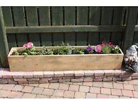 Planters garden furniture pots ornaments planter Loughview Joinery LTD