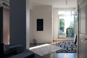 OCTOBER 1: Elegant Bachelor in Downtown Dartmouth