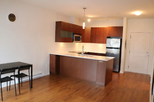 Large Furnished Studio Apartment - Just steps to Skytrain & SFU