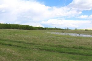 Check it out! 14 Acres Close to Beautiful Turtle Lake!
