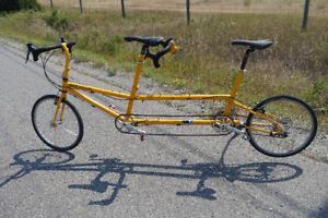 "Tandem Bike Friday ""Q"""