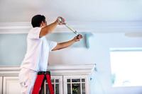 Professional Painting and affordable.