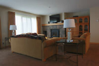 Deerhurst Newly Renovated Condominium Vacation & Rental Property