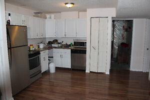 Brand new basement suite for rent Regina Regina Area image 3