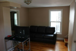 Furnished large bed Room in Dwntwn-Male and Working Professional