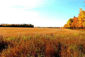 2.99 acres on the outskirts of Athabasca