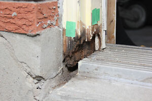Rhino Wood Repair Kitchener / Waterloo Kitchener Area image 6