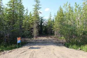 Open Lot @ Turtle Lake Lodge, ready for your lake get away!