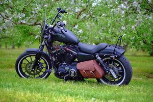 Harley Davidson 883-1200 Sportster Iron