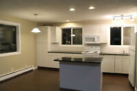 Large Newly Renovated 4 Bedroom Townhouse