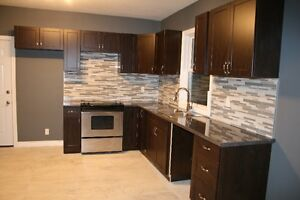 COMPLETELY RENO'D WITH IN-LAW SUITE London Ontario image 3
