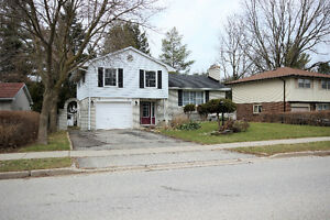 Beautiful Home 4 Bedroom Home in Desirable Orchard Park