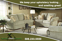 Carpet Cleaner/Steam Cleaning/Upholstery/Furniture/Rug Cleaning