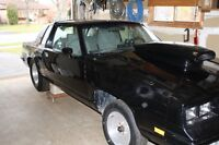 1982 olds ,