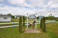 A Place to Call Home for you AND your Horses.