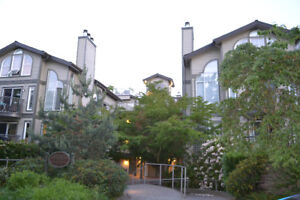One bdrm Fairview condo w/ large private backyard, parking, stor