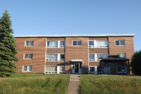 113 Hillside N. Apt 11   One Bedrm Condo Apt.,   Elliot lake, On